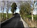 H5167 : Eskermore Road, Eskermore by Kenneth  Allen