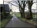 H5267 : Church Road, Laragh by Kenneth  Allen