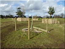 SO8844 : Tree planting, Croome Park by Philip Halling