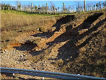 NJ3558 : Erosion by Anne Burgess