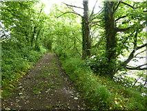 SH5066 : Anglesey Coast Path by Eirian Evans