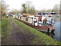 TQ0588 : Shadowfax, canal boat on the Grand Union by David Hawgood