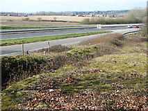TG1607 : View across the A47 road by Evelyn Simak