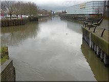 TQ4383 : The River Roding upriver of Highbridge Road by Marathon