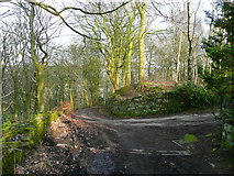 SE0421 : Clapgate Lane at a driveway junction, Ripponden by Humphrey Bolton