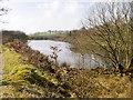 SD6912 : Smithills Moor Fishery, Bryan Hey Reservoir by David Dixon