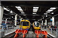TQ2982 : Platform 1 & 2, Euston Station by N Chadwick