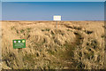 TF4791 : Salt Marsh at Rimac Nature Reserve by David P Howard