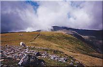 SH6963 : The ridge walk from the summit of Pen yr Helgi Du towards Carnedd Llywelyn by Eric Jones