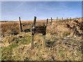 SD6613 : Smithills Moor by David Dixon
