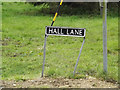 TM0682 : Hall Lane sign by Adrian Cable