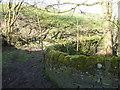 SE0520 : Stony Croft Lane crossing Sandyfoot Clough, Barkisland by Humphrey Bolton
