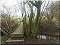 SJ7663 : Footbridge over Sanderson's Brook by Stephen Craven