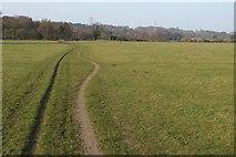 TL1947 : Bridleway across Biggleswade Common by Philip Jeffrey