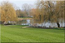 SU9850 : Surrey University campus by Alan Hunt