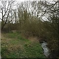 TL3555 : Bourn Brook, Toft by Dave Thompson
