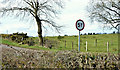 J2068 : Weight restriction sign, Ballynadolly, Stonyford/Lisburn (March 2016) by Albert Bridge