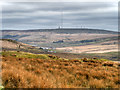 SD6719 : View towards Winter Hill from the side of Turn Lowe by David Dixon