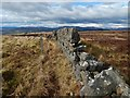 NS4377 : Dry-stone wall by Lairich Rig