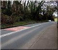 ST3389 : SLOW/ARAF on Caerleon Road, Newport by Jaggery
