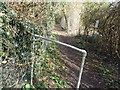 SO8862 : Path by the side of allotments by Jeff Gogarty