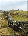 NY6666 : Hadrian's Wall by Mary and Angus Hogg