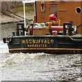 SJ5785 : Buffalo wake by Gerald England
