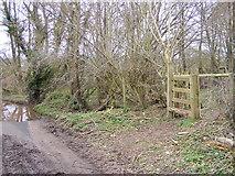 SO8093 : Path End by Gordon Griffiths