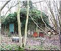 TG1600 : Ivy-clad building in Hethel Wood by Evelyn Simak
