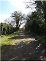 TM1658 : Pettaugh Lane Byway to King's Lane by Adrian Cable