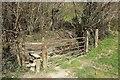 SX2161 : Stile near the West Looe by Derek Harper