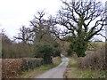 SO8092 : Lane to Broughton by Gordon Griffiths