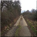 TL1361 : Towards Hook Wood by Dave Thompson