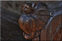 TG2834 : Trunch: St. Botolph's Church: Carving in the choir stalls 1 by Michael Garlick