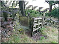 SE0522 : A gated stile, Norland by Humphrey Bolton
