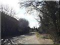 TM1355 : Lower Street, Coddenham by Geographer