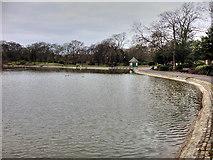 NZ2465 : Leazes Park (5) The Lake by David Dixon