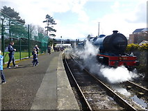 J4792 : Generating steam, Whitehead by Kenneth  Allen