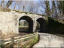SX7880 : Double arch railway bridge near Knowle by David Smith