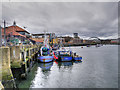 NZ4057 : Fish Quay by David Dixon