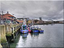 NZ4057 : Fish Quay by David Dixon