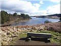 NY6686 : Bench by the head of the Whickhope inlet by Oliver Dixon