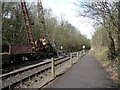 ST6670 : The Bath & Bristol Railway Path, north of Bitton Station by Christine Johnstone