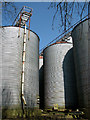 TF8508 : Grain silos at Petygards by Evelyn Simak