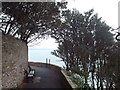 SX9262 : Coastal footpath, Torquay by Malc McDonald