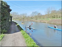 TQ1684 : Perivale, canoeists by Mike Faherty