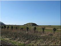 SH6214 : Cerrig y gorllwyn-Barmouth, Gwynedd by Martin Richard Phelan