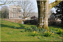 SX4268 : Cotehele viewed from its gardens by Philip Halling