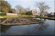 SX4268 : Pond in the gardens of Cotehele by Philip Halling