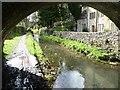 SO8802 : Thames & Severn Canal, below Iles Lock by Christine Johnstone